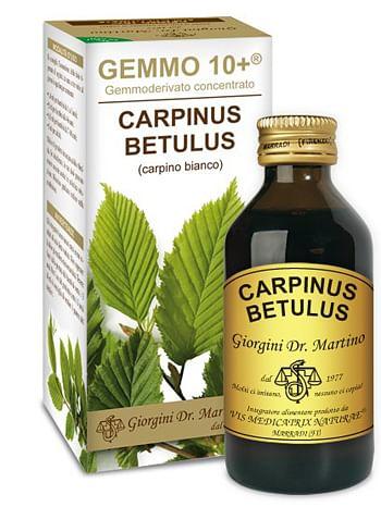 Gemmo 10+ carpino bianco 100 ml liquido analcolico